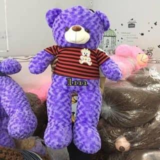 Gấu teddy của linhha1010 tại Kiên Giang - 2626751