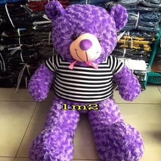 gấu teddy 1m2 của dldnw tại Quận Ninh Kiều, Cần Thơ - 1770671