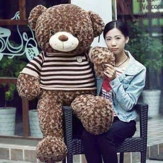 Gấu teddy ao len giá hot của tuananh918 tại Bình Dương - 2682398