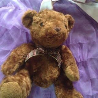 Gấu teddy #cunguoimoita của woanhuynh tại Hồ Chí Minh - 2347267