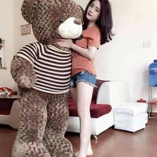 Gấu teddy đủ size của doanhong9 tại Thái Nguyên - 1173049