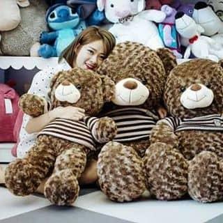 Gấu teddy giá rẻ của yenquynhsky tại Hồ Chí Minh - 2084027