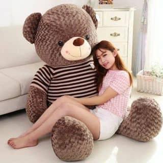 Gấu teddy khổng lồ 2m của gaubongxinhshop tại 131 Cù Lao, phường 2, Quận Phú Nhuận, Hồ Chí Minh - 600933