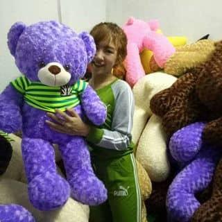 Gấu teddy nhỏ của lamda2 tại Sóc Trăng - 3639671