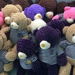 Gấu teddy tặng người ấy của nguyenvan515 tại Vĩnh Phúc - 1609829