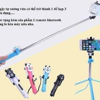 Gậy tự sướng kết nối blutooth kiêm giá đỡ 3 chân WXY-01 của bitano9 tại Hồ Chí Minh - 1833048