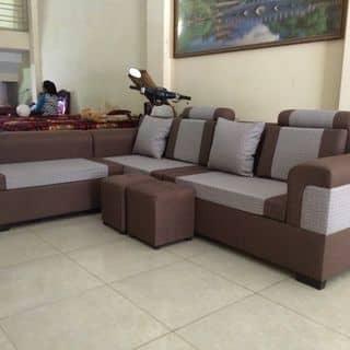 Ghế sofa của xinhtuoiheocon tại Hải Dương - 2494396