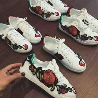 giày của chiphuong52 tại Nam Định - 2924008