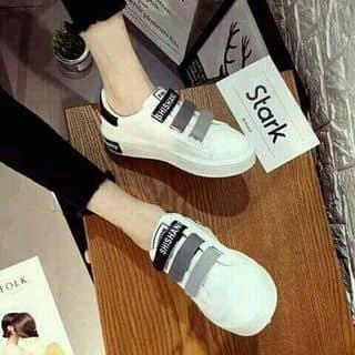 giày của dogiang37 tại Nam Định - 2929575