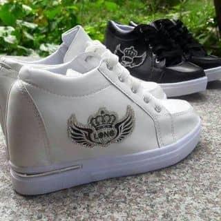giày của kimsuki tại Lạng Sơn - 1619481