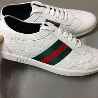 giày của hoangmeo128 tại Hải Phòng - 1819252