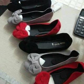 giày của gygo tại Long An - 2308154