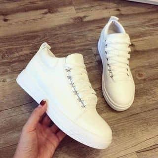 giày của nhoimai tại Lâm Đồng - 2329347