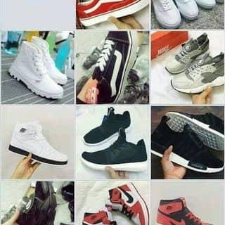 giày của thuhanghoang1 tại Quảng Trị - 2456327