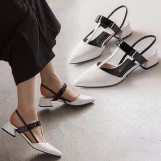 giày của levananh02 tại Phú Yên - 2729324