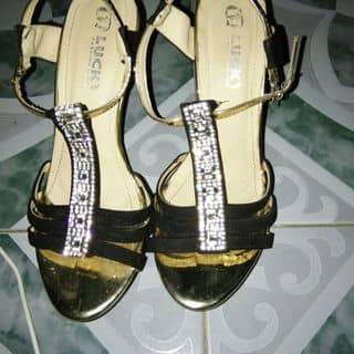 Giày 👡 của hanguyenhoai tại 97 Trần Phú,  P. Phủ Hà, Thành Phố Phan Rang-Tháp Chàm, Ninh Thuận - 2069400