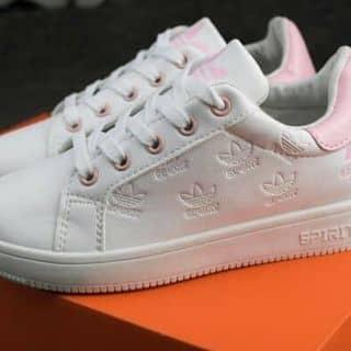 Giày adidas  của thuthu390 tại Khánh Hòa - 2933447