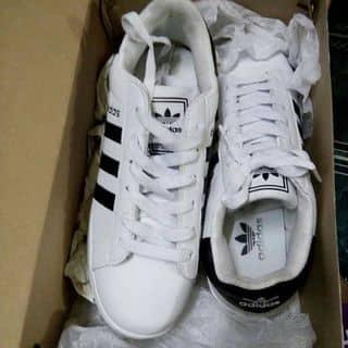 Giày Adidas của loantranthikim1 tại Shop online, Huyện Bến Cát, Bình Dương - 1940504