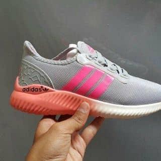 Giày Adidas của elt2rung tại 32 Lộ Tẻ, Tân Tạo A, Quận Bình Tân, Hồ Chí Minh - 2933430