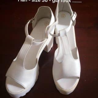 Giày cao của thanhtam_lxhb tại An Giang - 2499108