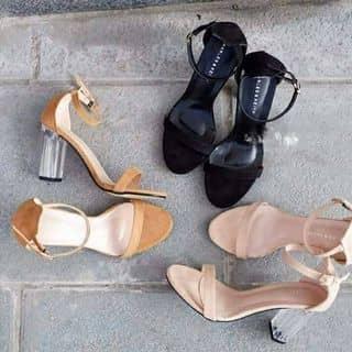 Giày cao gót ZARA của shopgiaygiare tại Đà Nẵng - 3138282
