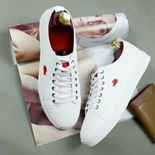 Giày da của 01283109319 tại Quảng Ninh - 2482240