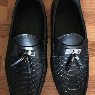 Giày da chuẩn 💯% của tranngan157 tại Thị trấn Sapa, Huyện Sa Pa, Lào Cai - 1809678