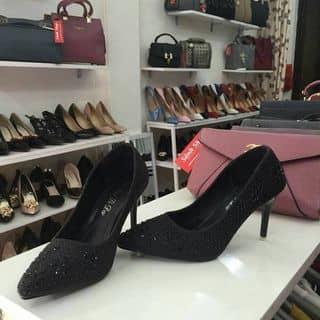 Giày đẹp của phuongquynh116 tại Ninh Thuận - 2181571