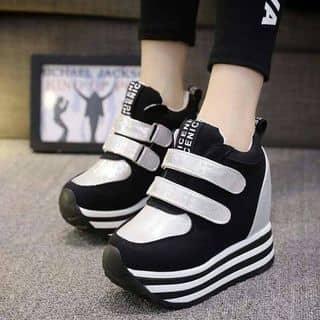 Giày độn đế thể thao của 5592 tại Hồ Chí Minh - 2518025