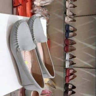 Giày mọi Claks da bò . Đồng giá 190k  của nhooc3 tại Đắk Nông - 2843479