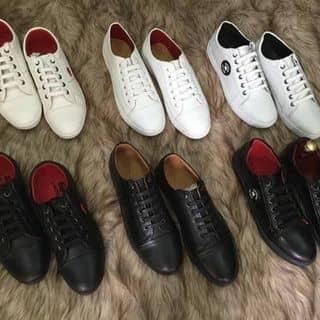 Giày nam của anhphuong507 tại Quảng Ngãi - 2883538