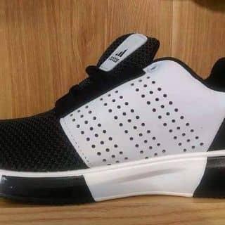 Giày nam 2016 của macvanvi tại Hải Dương - 1477833