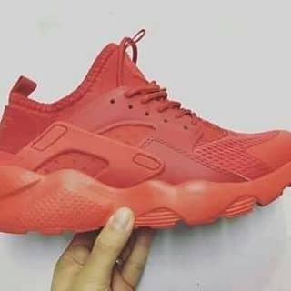 Giày nhé b👟👟 340k còn nhiều mẫu ạ của huonglann1 tại Quảng Trị - 2576240
