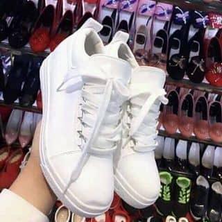 Giày nữ của newzealand tại Lâm Đồng - 2638230