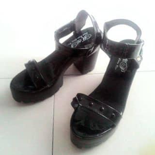 Giày sandal dế cao của baomy2 tại Hồ Chí Minh - 2531253