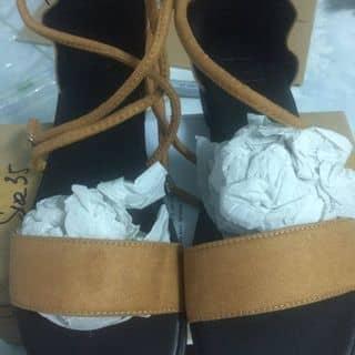 Giày SANDAL TRÒN NÂU của conbaohoa2100 tại Hồ Chí Minh - 3177098