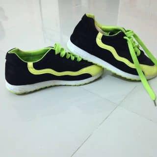 Giày thể thao của zipi tại Khánh Hòa - 2674346