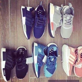 Giày thể thao NMD full màu của hongthanhpham tại Nam Định - 2471054