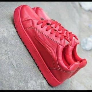 Giày thể thao nữ của nextlyly tại An Giang - 2238091