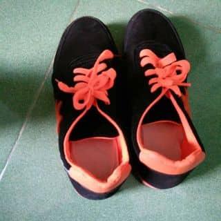 Giày Thể Thao Nữ Adidas của kimphuong190 tại 97 Trần Phú,  P. Phủ Hà, Thành Phố Phan Rang-Tháp Chàm, Ninh Thuận - 3170685