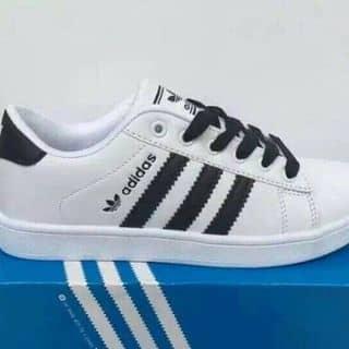 Giày tốt giá rẻ nha của nguyenyenyen6 tại Nghệ An - 2449439