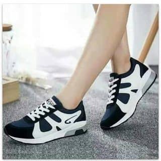 Giày tt của hoanglong334 tại Hà Giang - 1723185