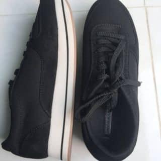 Giày zara size 38 của muoixi28 tại Quang Trung, Thành Phố Quảng Ngãi, Quảng Ngãi - 3217583