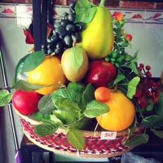giỏ trái cây giả lớn của phamdi7 tại Trần Đại Nghĩa, Phường 4, Thành Phố Vĩnh Long, Vĩnh Long - 2443460