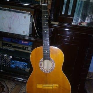 Guitar của elongeejustine tại Lâm Đồng - Đà Lạt, Huyện Đức Trọng, Lâm Đồng - 951963
