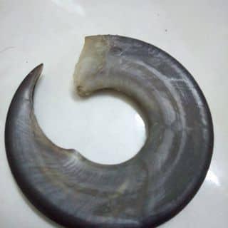 Hang doc của phamvu64 tại Huyện đảo Lý Sơn, Huyện Lý Sơn, Quảng Ngãi - 2076897