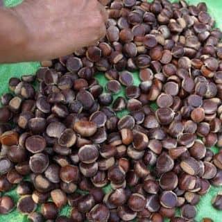Hạt giẻ cao bằng của ngoclan2371991 tại 24 Lê Lợi, Thành Phố Pleiku, Gia Lai - 1515843