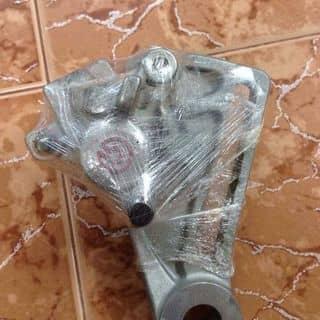 Heo brembo của vinhlychi tại Hồ Chí Minh - 2290567
