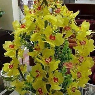 Hoa đá pha lê của 0977294087 tại Shop online, Thị Xã Từ Sơn, Bắc Ninh - 2265849