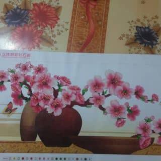 Hoa đào đón xuân may mắn của oriori7 tại Phan Đình Phùng,  Bắc Lý, Thành Phố Đồng Hới, Quảng Bình - 2322490